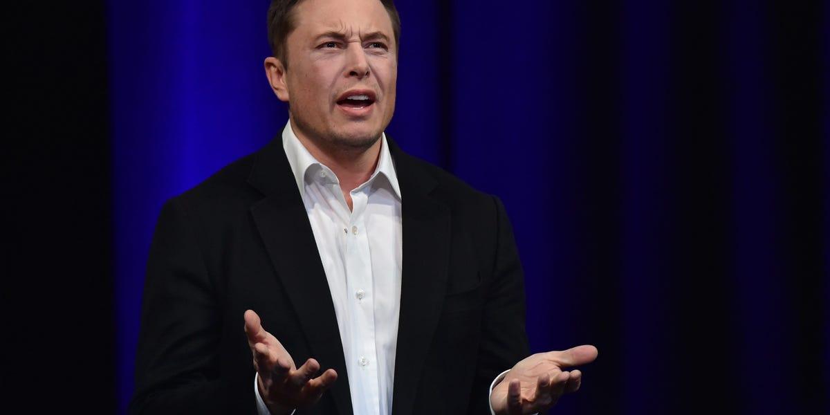 'Elon Musk Phd' Listed As Director of Elonspace Ltd on UK Business Register