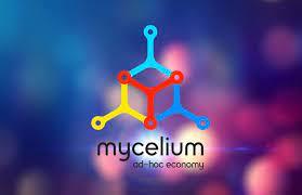 Mycelium Guide