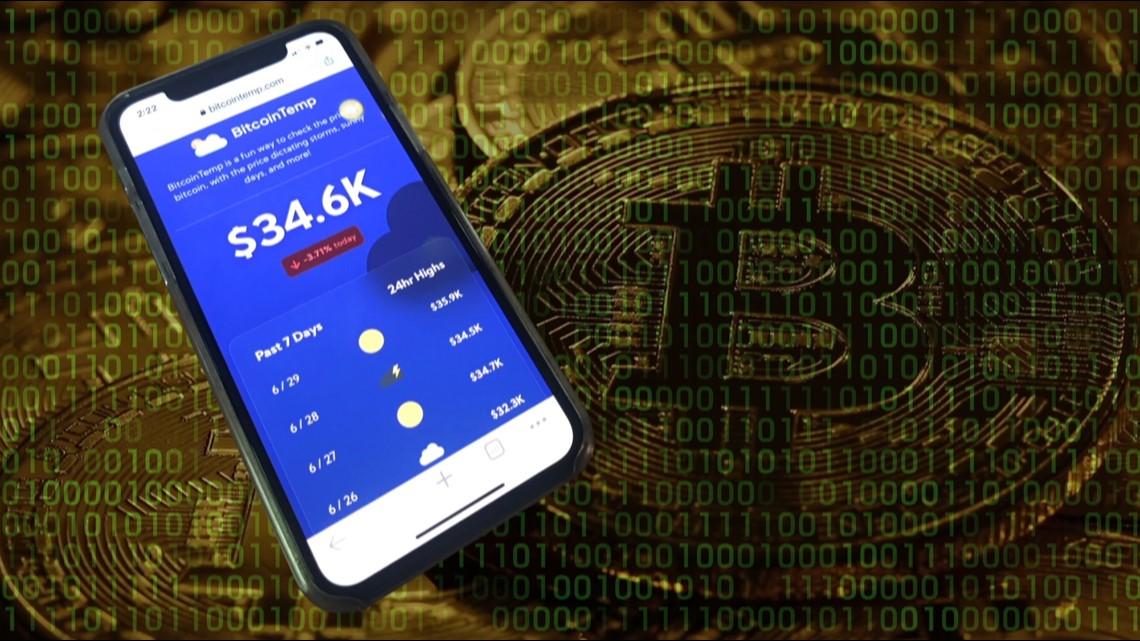 Teen web developer creates cutting-edge Bitcoin forecasting website