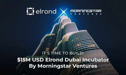 Morningstar Ventures Commits $15 Million USD To Invest In Projects Building On Elrond Network And Opens An Elrond Incubator in Dubai
